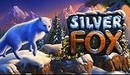 Гаминатор Silver Fox