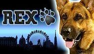 Игровой автомат Rex без регистрации онлайн